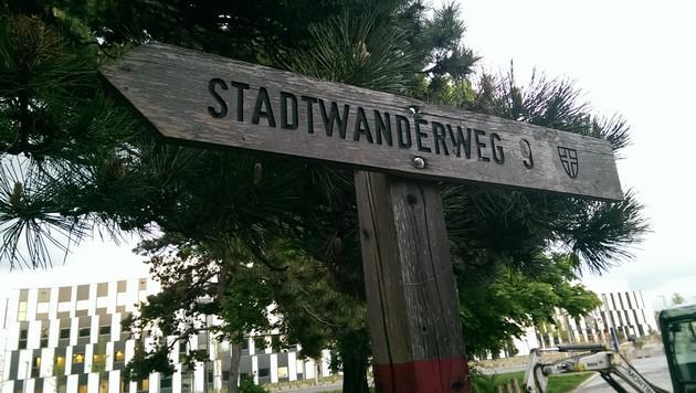 Holzschild Stadtwanderweg