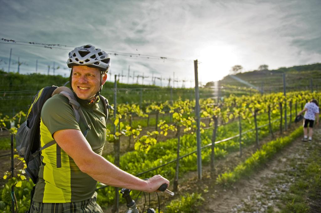 Pause beim Radfahren, im Weingarten.