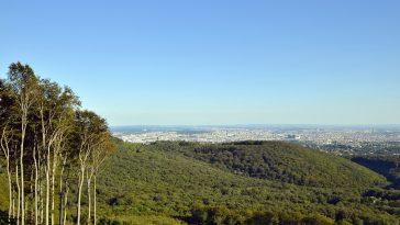 Blick vom Aussichtspunkt Hermannskogel auf die Stadt Wien