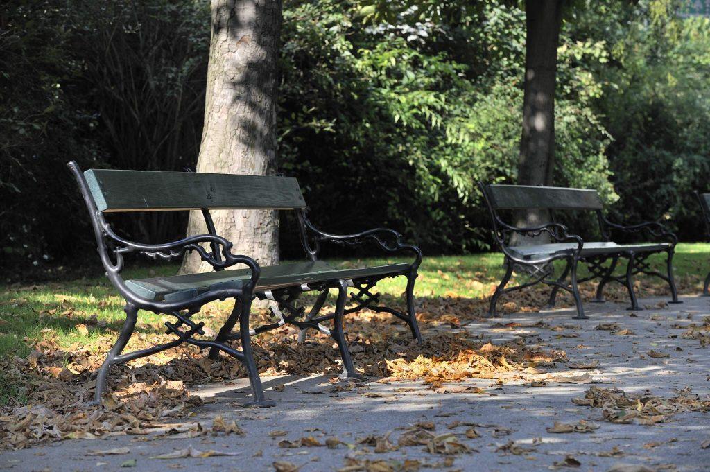 Leere Parkbänke im Wiener Stadtpark