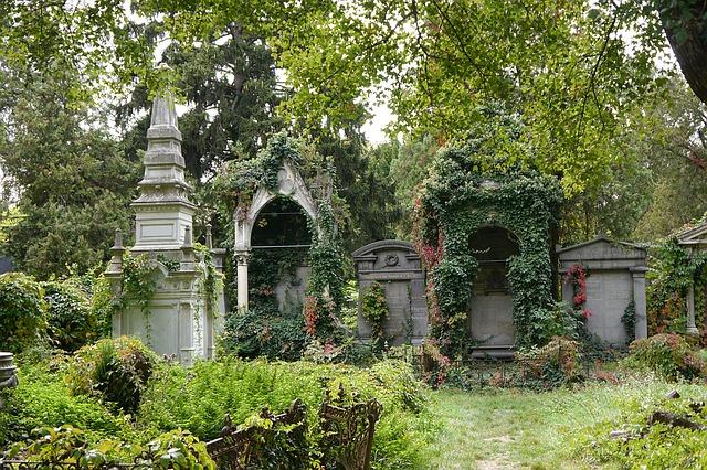 verwachsene Gräber eines alten Friedhofes