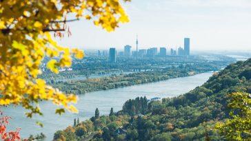 Ausblick vom Leopoldsberg über die Wälder zur Donauinsel