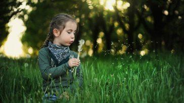 Kind sitzt in der Wiese und lässt Löwenzahnsamen fliegen