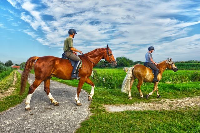 zwei Pferde mit Reitern marschieren von einer schmalen Straße in einen schmalen Feldweg