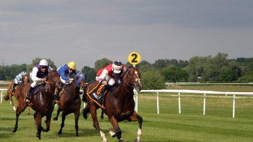 drei Pferde auf einer Pferderennbahn