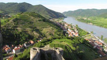 Blick von der Ruine auf den Tausendeimerberg bei Spitz an der Donau