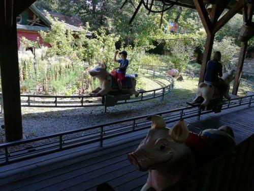 eine Attraktion im Familypark mit fahrenden Kindern