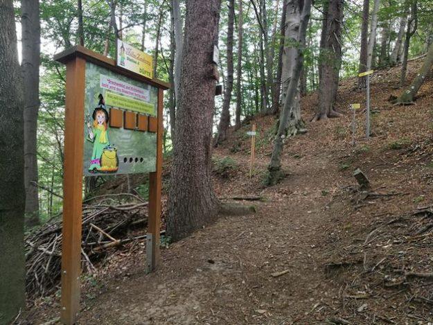 Waldweg mit vielen Lerntafeln, ideal für Kinder